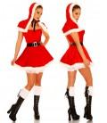 Weihnachtsmann-Petticoat-Kostüm - AT11087