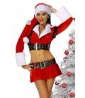 Weihnachtskostüm - AT12281