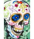 Skull Sweatshirt - AT14389